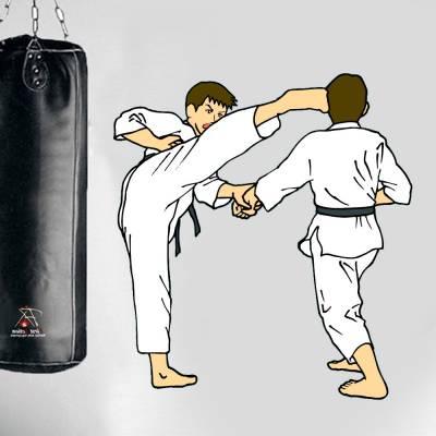 Adesivo De Parede Karateca Chute Alto 02