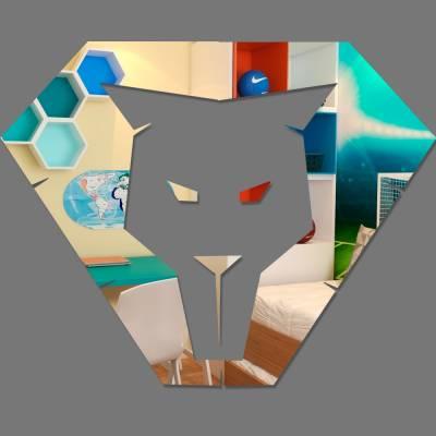 Espelho Decorativo Juba De um Leão