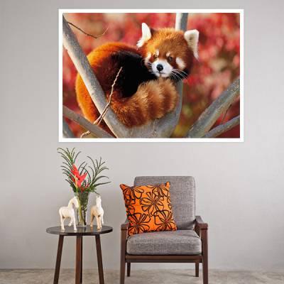 Painel Adesivo Para Parede Panda