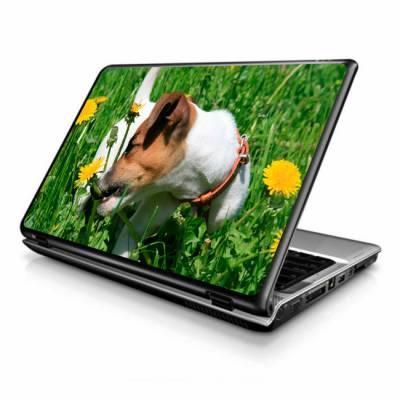 Adesivo Skin para Notebook / Netbook cachorro 2